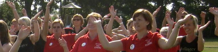 Header Jubiläum 2010 Wavin flag